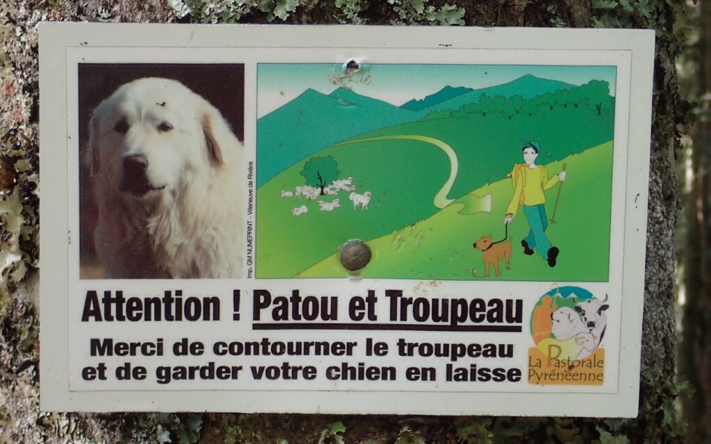 Sign warning hikers that sheep herds are guarded by patou, large white dogs, and to keep some distance.