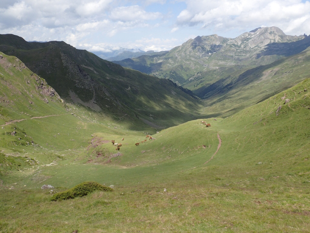 View from the col. I climbed 1600m up that valley. Wonderful alpine scenery and marmots.