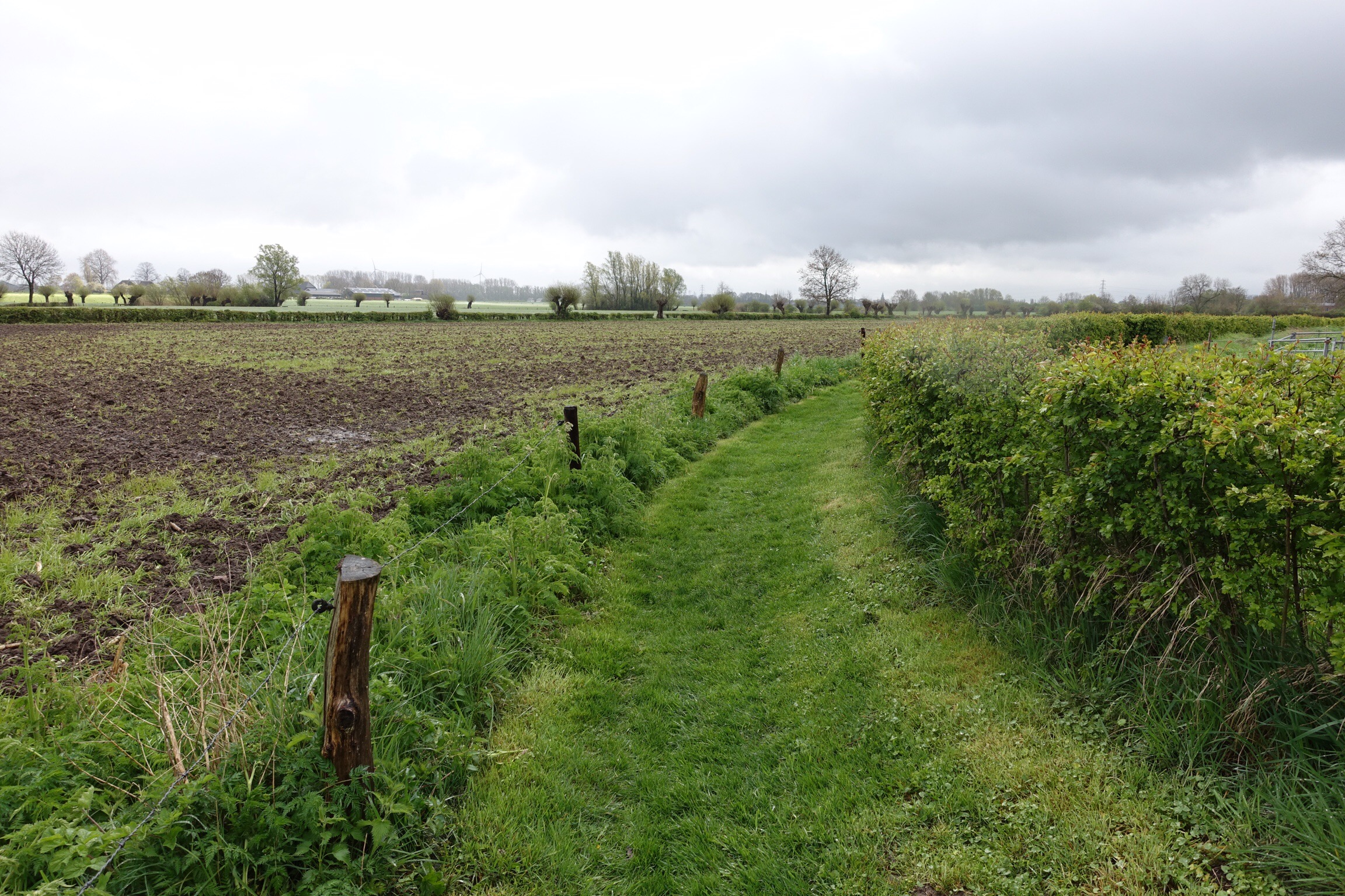 Nice walking trail between farm fields