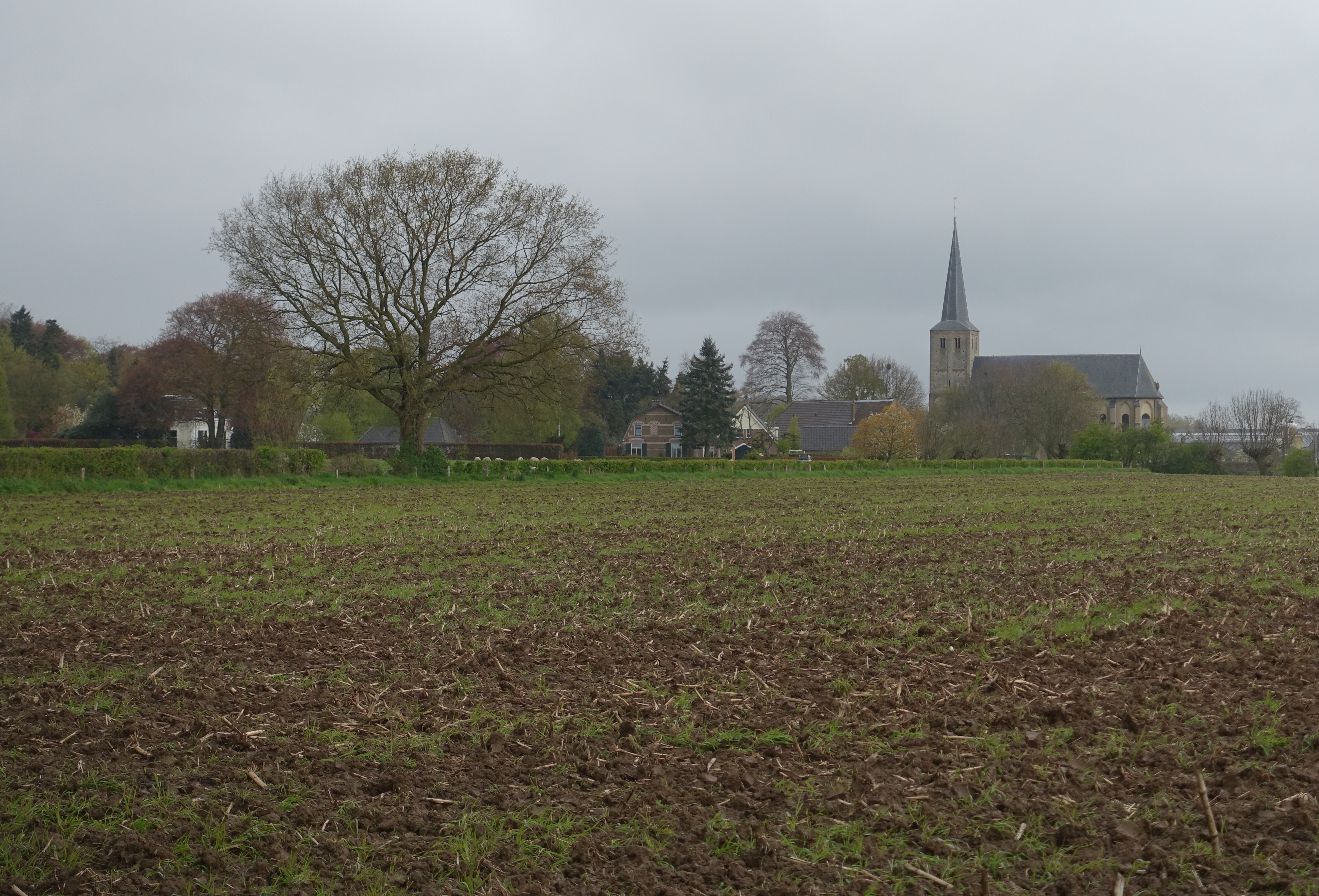Looking back at town of Voorst