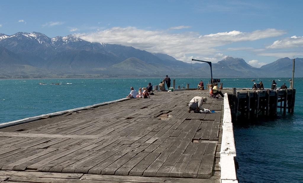 kaikoura-wharf